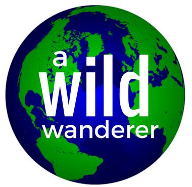 A Wild Wanderer